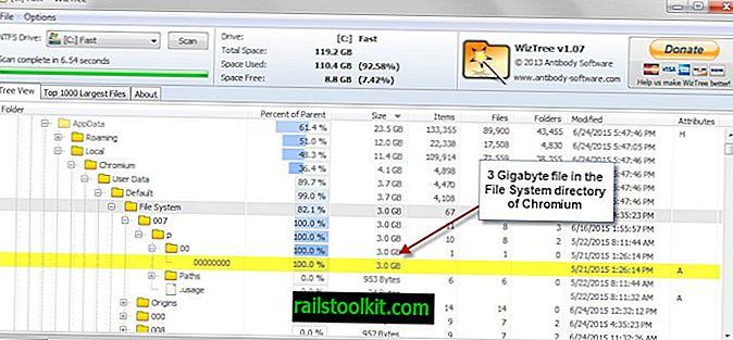 """Kietasis diskas užpildomas?  Patikrinkite """"Chrome"""" failų sistemos aplanką"""